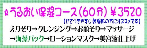 うるおい保湿コース.jpg