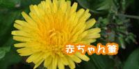 info2.1.jpg